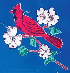 Virginia's state bird: the cardinal