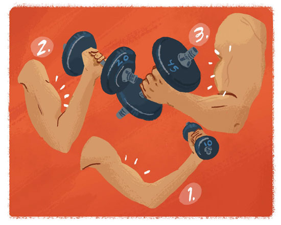 fitness arms illustration