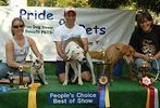14th annual Pride of Pets pageant #32