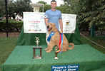 PETS-DC's Pride of Pets Dog Show #16