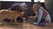 2007-12-06_film_3108_3833