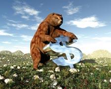 2008-07-17_money_3645_4271