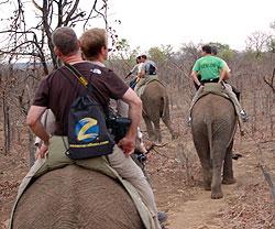 Zoom_SouthAfrica.jpg