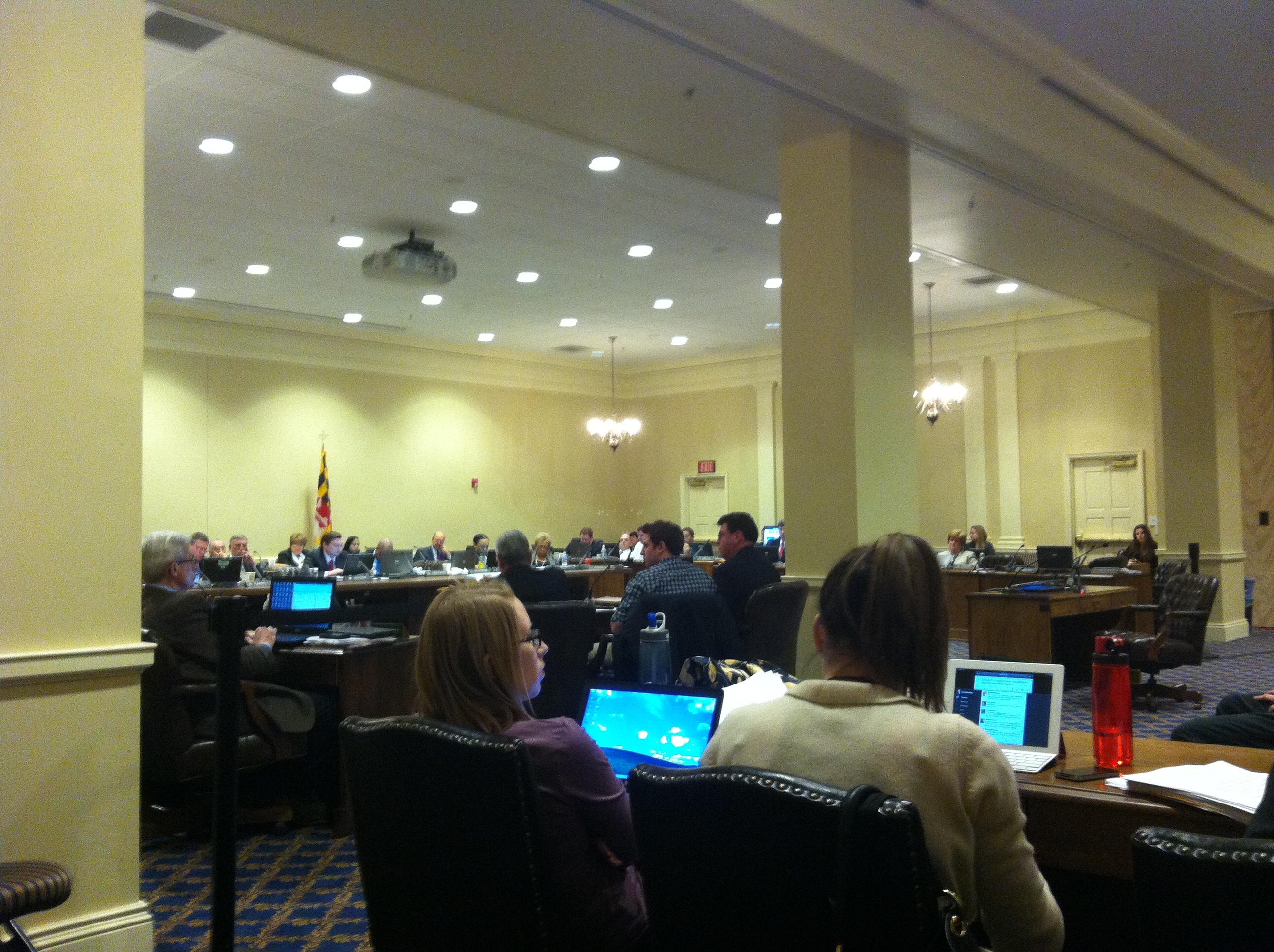 MD House Marriage Hearing 001.jpg