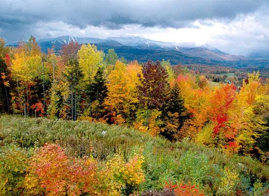 Vermont_Fall.jpg