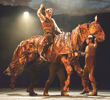 War Horse Photo by