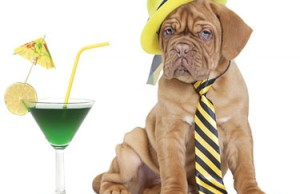 shutterstock_191997365-dog-with-cocktail-by-Kuznetsov-Alexey