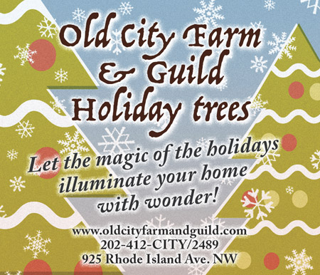 Old City Farm and Guild Holiday Trees -- oldcityfarmandguild.com / 202-412-2489