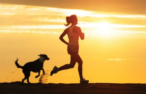 dog+jogging+by+Dirima