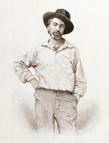 walt whitman brief biography Thoreau essay thoreau essay thoreau  and walt whitman were three authors during this time that wrote about an idea that would later become  a brief biography.