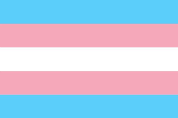 The Transgender Pride Flag  (Credit: Monica Helms, uploaded by Dlloyd via Wikimedia Commons).