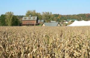 Photo: Liberty Ridge Farm