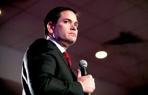 Marco Rubio - Photo: Gage Skidmore