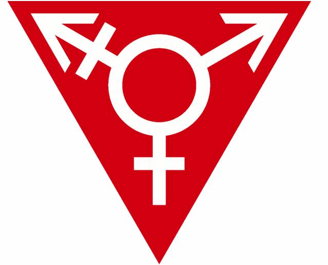 A transgender symbol inside a red triangle (Photo: JesseValentinePortz, via Wikimedia).