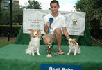 PETS-DC's Pride of Pets Dog Show #36