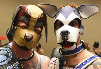 MAL 2019: Puppy Park, The Lobby, Leather Market and More #5