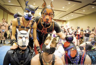 MAL 2019: Puppy Park, The Lobby, Leather Market and More #152