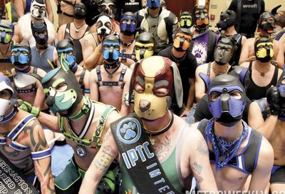 MAL 2019: Puppy Park, The Lobby, Leather Market and More #153