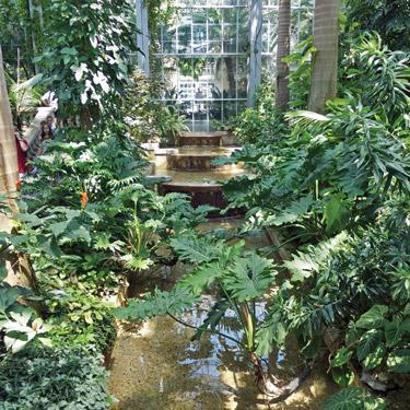 Botanic Gardens Photo by Todd Franson