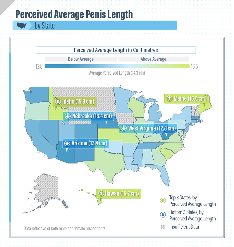 Size Matters: New survey determines ideal penis length in 10 ...