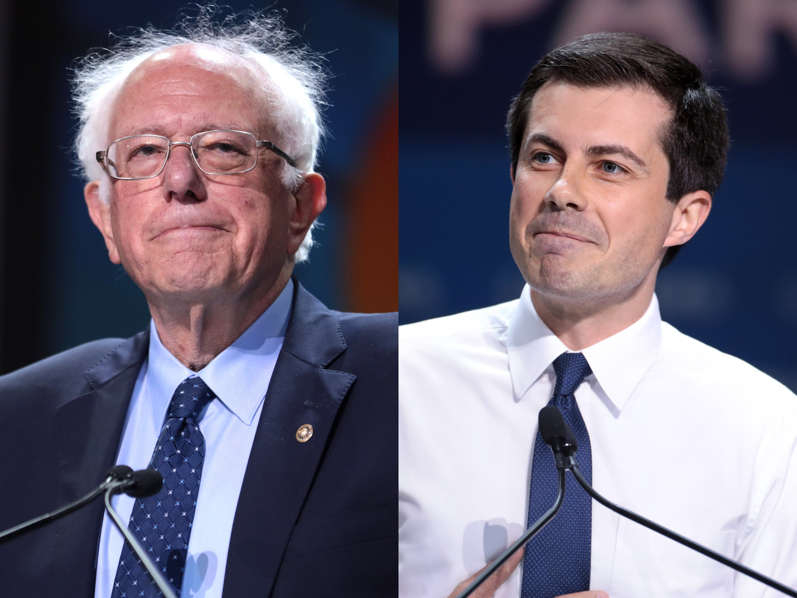 bernie sanders, pete buttigieg, new hampshire, primary