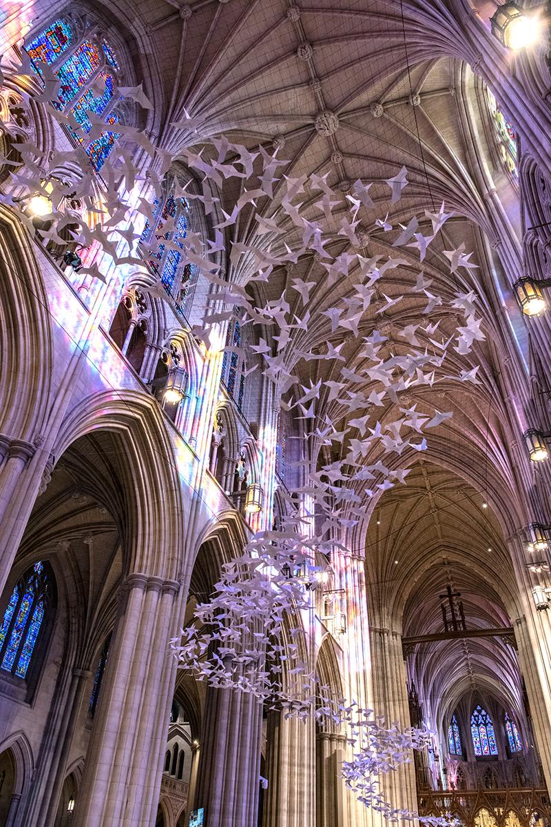 Washington National Cathedral: Doves -- Danielle E. Thomas